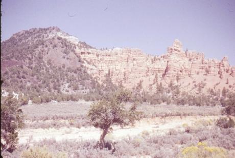 img517 91853 Bryce Canyon a (800x540)